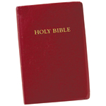 World Religion Day  - King James Large Print Bible