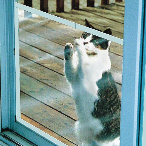 venison cat food uk