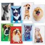 Memos, Notepads & Cards - Dog And Cat Blank Note Card