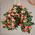 Lawn & Garden - Artificial Impatiens Hanging Bush