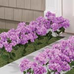 Lawn & Garden - Artificial Light Purple Hydrangeas