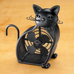Quick Gift Ideas - Black Cat Fan