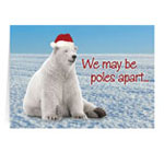 Flash Sale - Polar Bear Christmas Card - Set of 20