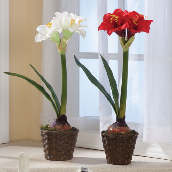 Potted amaryllis faux flower artificial flowers for Pot amaryllis