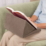 Home Office - Wedge Book Pillow