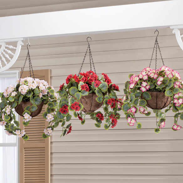 Fully Assembled Geranium Hanging Basket