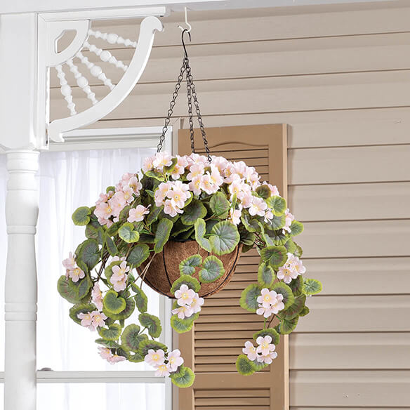 Geranium Hanging Stem by OakRidge™