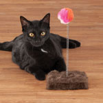 Pets - Cat Toy Punch Ball