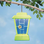 Pest Control - Decorative Bug Zapper