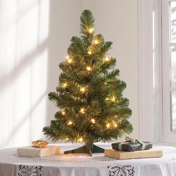2' Pre-lighted Oregon Fir