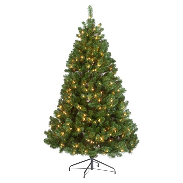 9' Pre-lighted Oregon Fir