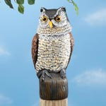 Pest Control - Scare Owl with Spring Neck by Pest-B-Gone™