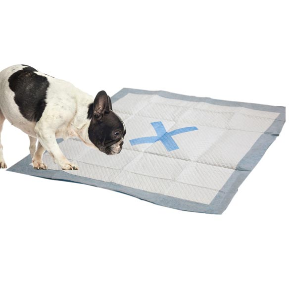 X Marks the Spot Puppy Pads, 50 count