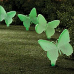 Outdoor Décor - Glow-in-the-Dark Butterfly Stakes, Set of 4