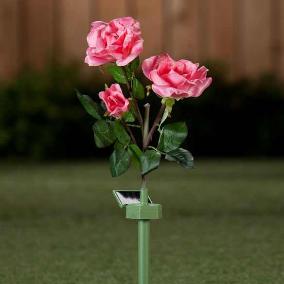 Solar Powered Garden Roses