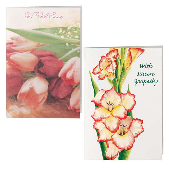 All Occasion Cards - Set Of 24 - View 3