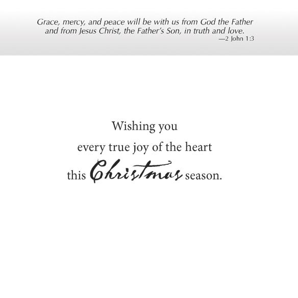 Cardinal Blessings Christmas Card Set Of 20 - View 3