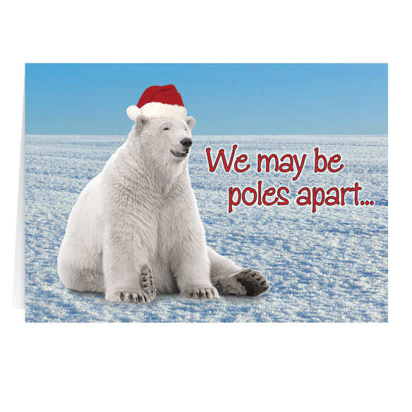 Polar Bear Christmas Card - Set of 20 - View 2
