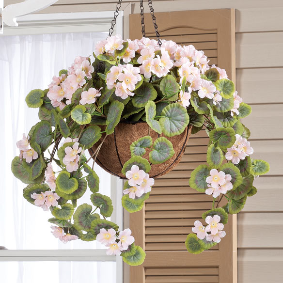 Fully Assembled Geranium Hanging Basket - View 2