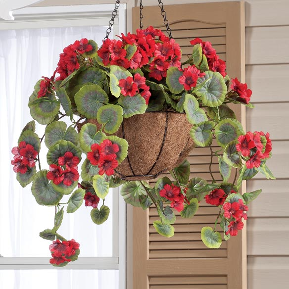 Fully Assembled Geranium Hanging Basket - View 4
