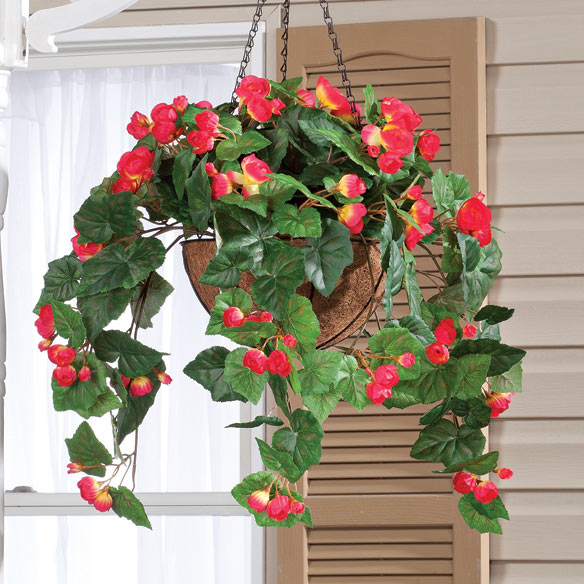 Fully Assembled Begonia Hanging Basket by OakRidge Outdoor™ - View 2