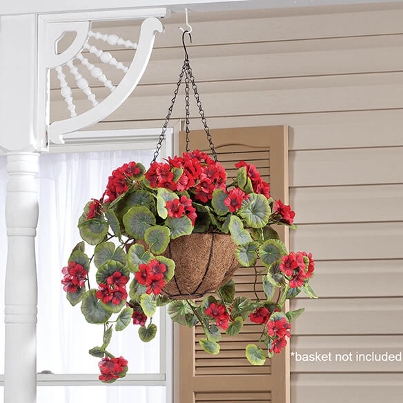 Geranium Hanging Stem by OakRidge™ - View 3