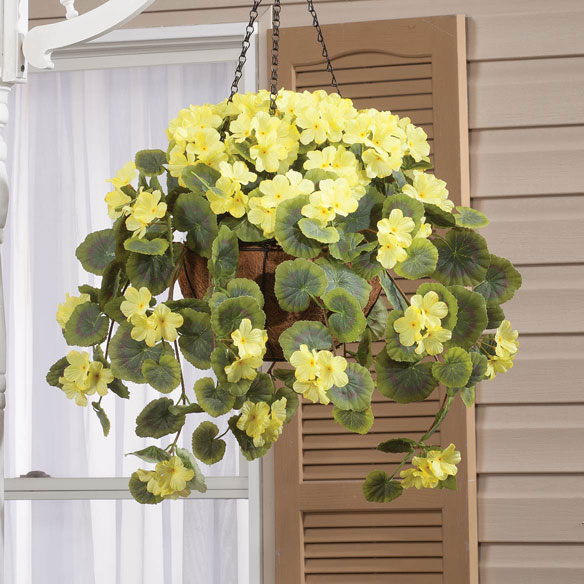 Geranium Hanging Stem by OakRidge™ - View 5