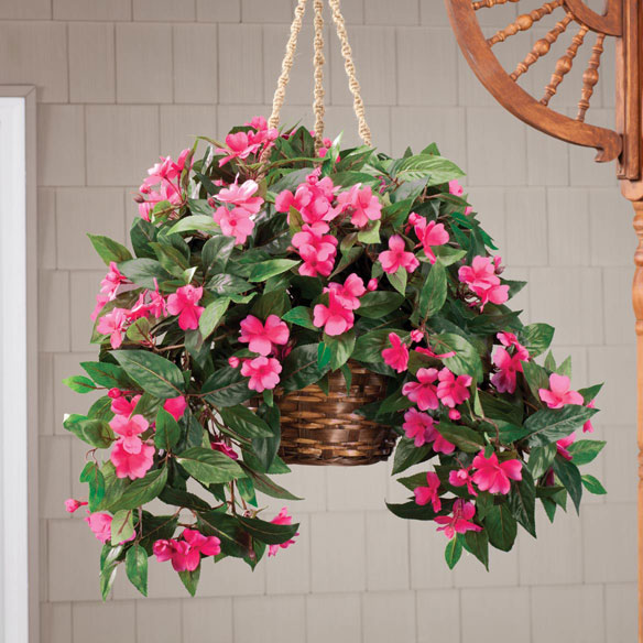 Impatiens Hanging Stem by OakRidge Outdoor™ - View 5