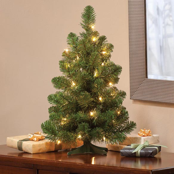 2' Pre-lighted Oregon Fir - View 3