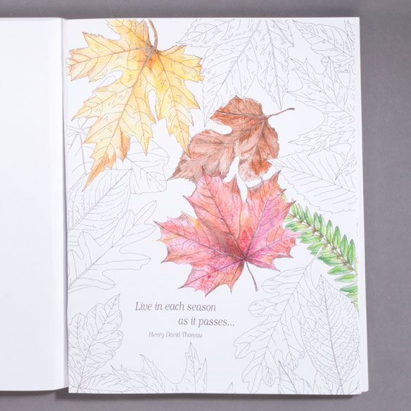 Wonders of Nature Coloring Book - View 2