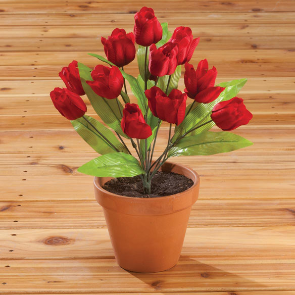 Tulip Bush by OakRidge Outdoor™ - View 4