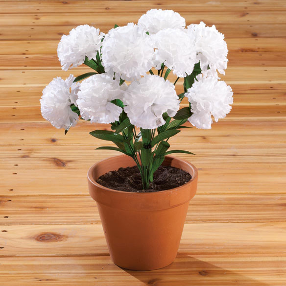 Carnation Bush by OakRidge™ - View 3