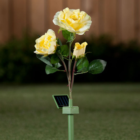 Solar Powered Garden Roses - View 2